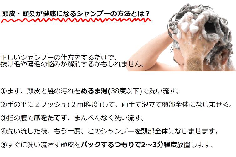 スカルプシャンプーの洗髪方法